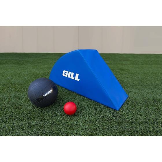 Gill Archy Training Mat