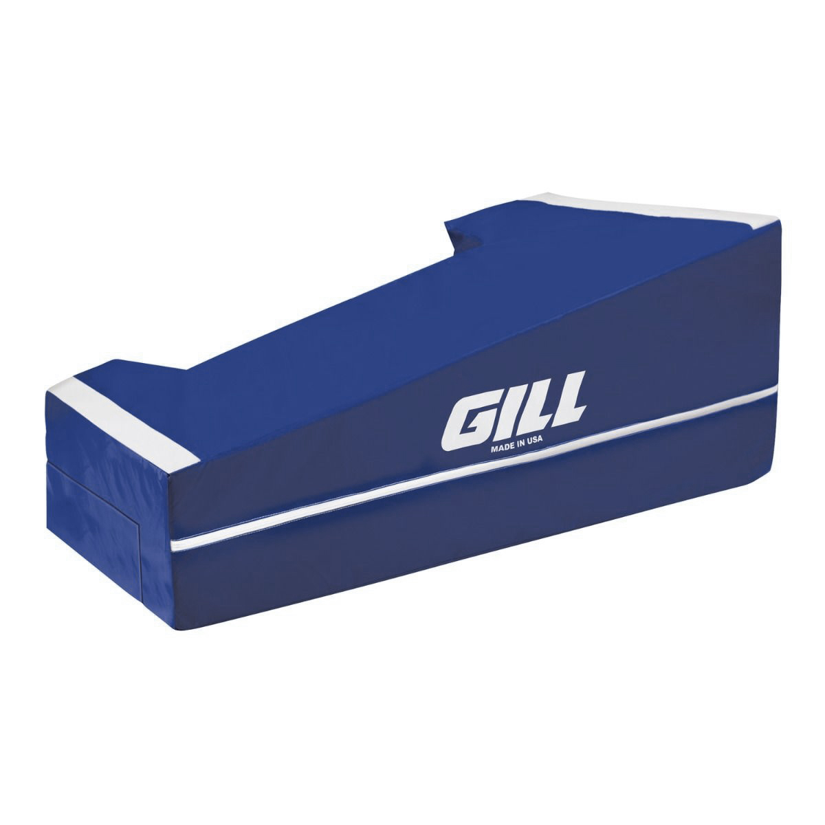 Gill Sloped Manual AGX Base Pads NY