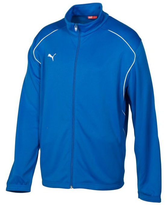 Puma Performance Training Youth Jacket