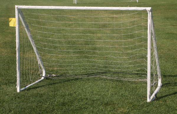 Peewee/Practice Soccer Goal