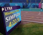 Lynx Video Display Boards