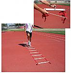 Basic Agility Ladder